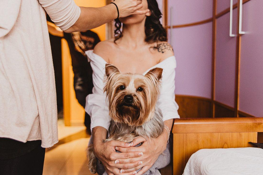 Novia maquillándose con su perro yorkshire