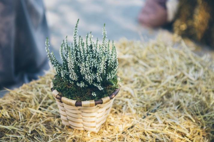 fardos, brezo, boda en quejana organizada por Conmemora wedding planner